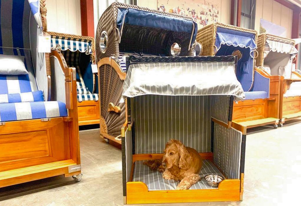 Hundestrandkorb von Gartenmoebel-NRW