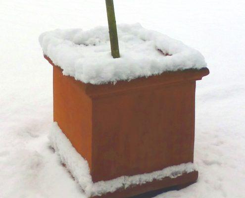 Frostverträgliche Terrakotta